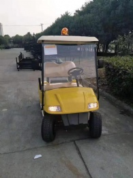 Golf Cart 2 Seaters